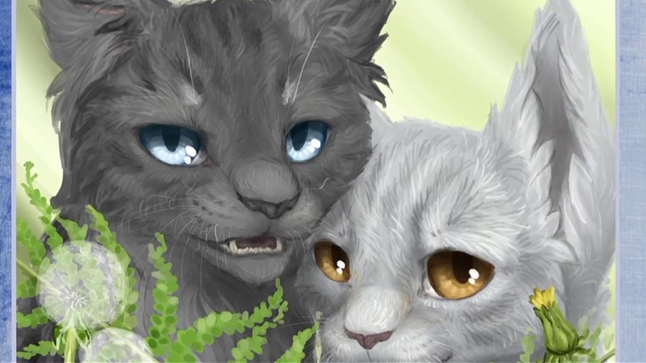 коты воители голубка и шмель картинки нельзя носить