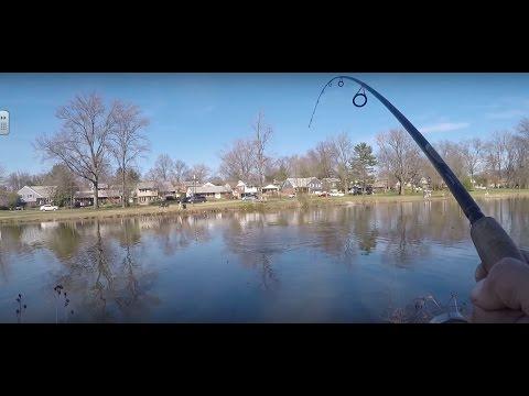 Bass. Turtle Kid. Snakehead.  Newton Lake,NJ.