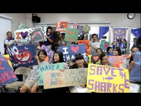 Guam's Youth Help to Notch Win for Shark Conservation | Pew