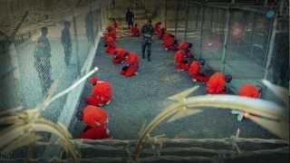 Operation Homeland Liberty: Stop the NDAA