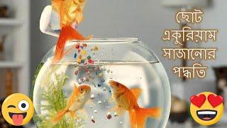 small aquarium decoration ideas | একুরিয়াম সাজানো | একুরিয়াম তৈরি | একুরিয়ামে মাছ পালনের পদ্ধতি