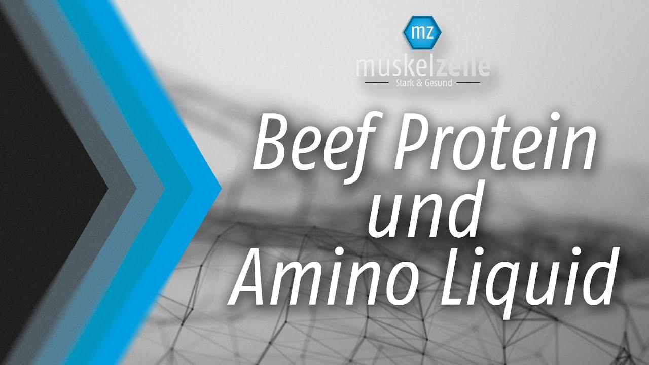 Muskelzelle - Beef Protein & Amino Liquid - YouTube