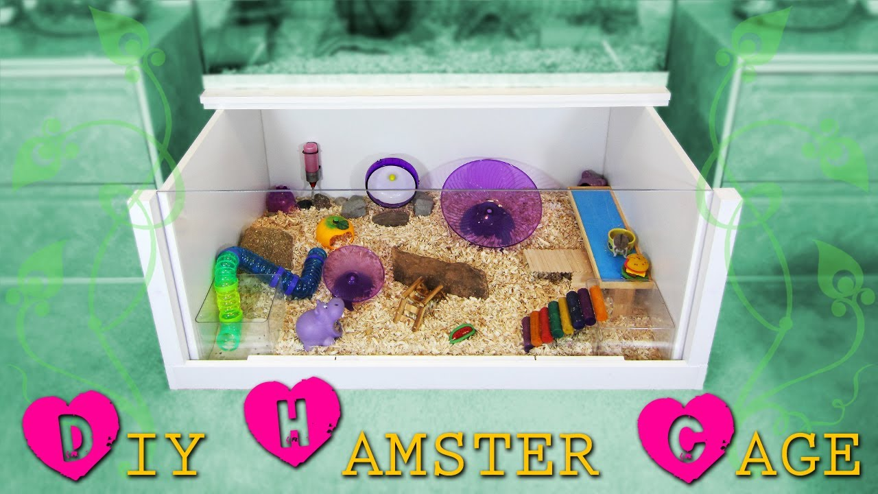 How to build a diy hamster cage instructions youtube for How to build a hamster cage
