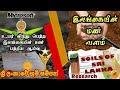 இலங்கையின் மண் வளம் | Soil of Sri Lanka | ශ්රී ලංකාවේ භූමි සම්පත්