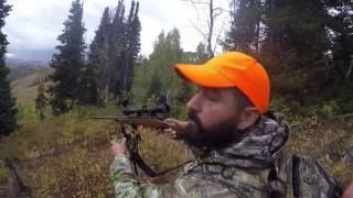 2016 UT elk and mule deer hunt
