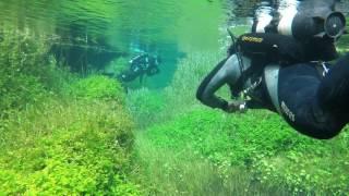 connectYoutube - Ewans Ponds Scuba diving