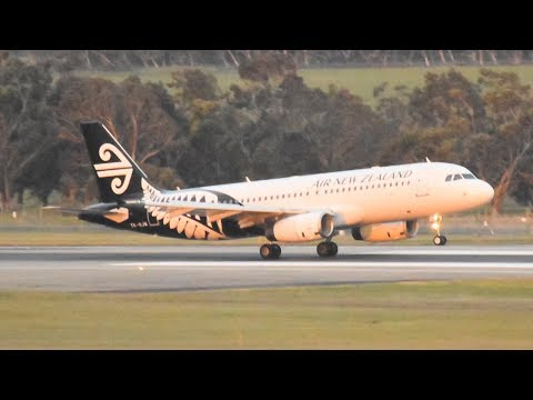 Air New Zealand A320 Lands with 85km/h HEAD-WIND GUSTS at Melbourne Airport