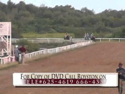 Horse Racing in Guyana Part 2