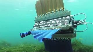 Four-finned robot swims like a cuttlefish