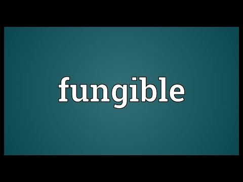 Fungible Meaning