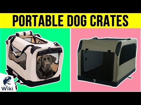 10 Best Portable Dog Crates 2019