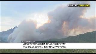 Υπο έλεγχο φωτιά σε δασική έκταση στα Κοίλα Φερών του Νομού Έβρου