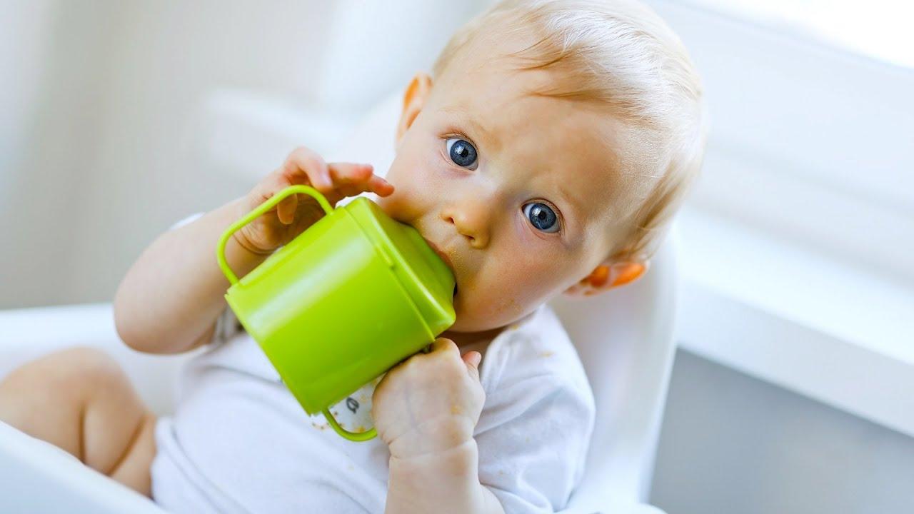 Quand bébé devrait commencer à utiliser la tasse Sippy