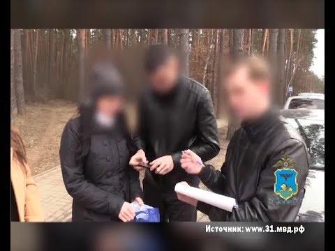 Белгородскую чиновницу подозревают в получении взятки в особо крупном размере