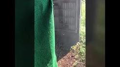 BIGGEST YELLOWJACKET WASP NEST EVER!! 😱😬