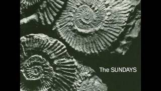 THE SUNDAYS-I KICKED A BOY.wmv