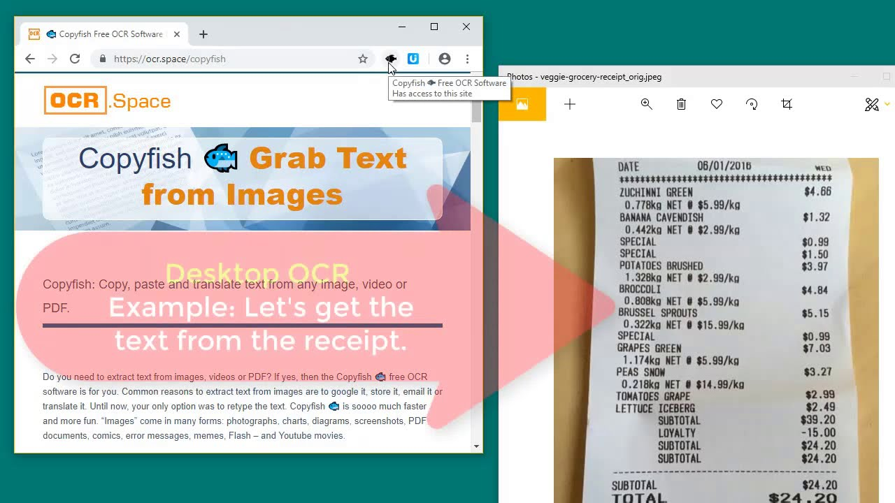 🐟 How to use Copyfish Free OCR Software for Chrome and Firefox
