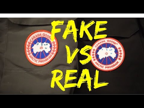 Side By Side Comparison Of A Fake & Real Canada Goose