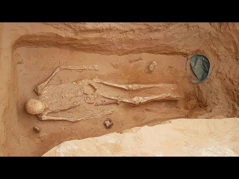 Золото сарматских царей: что нашли археологи под Астраханью