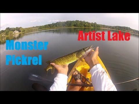 Artist Lake Pickrel