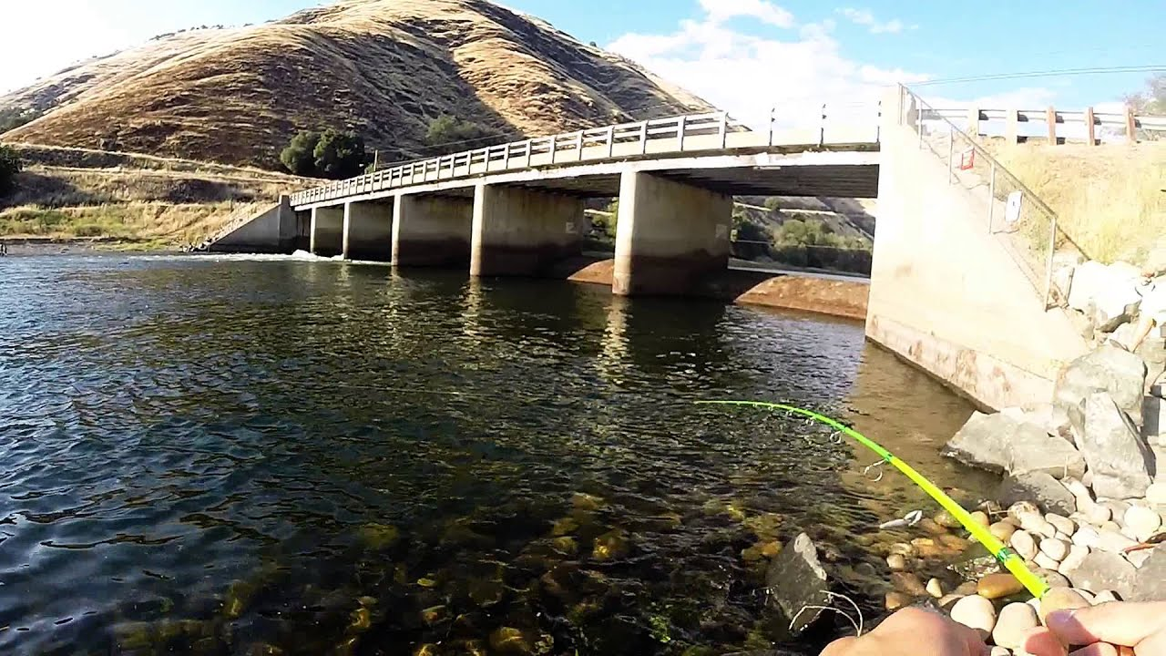 Summer time rainbow trout fishing the kings river youtube for Kings river fishing