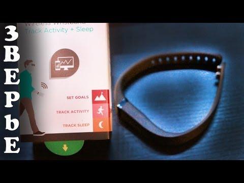 Обзор Fitbit Flex