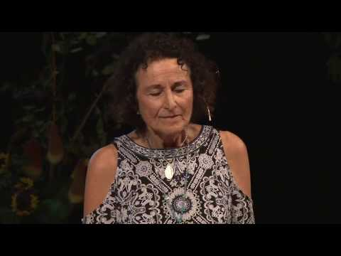 The Neurophysiology of Spiritual Guidance | Stephanie Mines | TEDxFindhornSalon