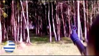 """Caza de palomas con chumbera (rifle de aire comprimido 5.5 mod. gs1250 nitro pistón """"Rochester"""")."""