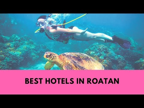 Hotels In Roatan: Top 10 Recommended Places To Stay In Roatan (Honduras)