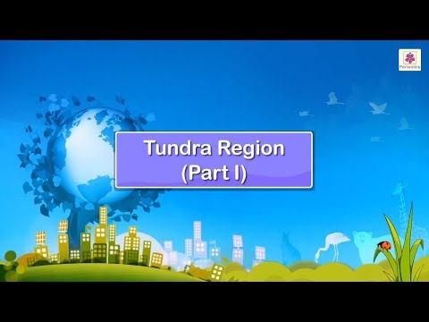 All About Tundra Region - Frozen Prairie | Periwinkle
