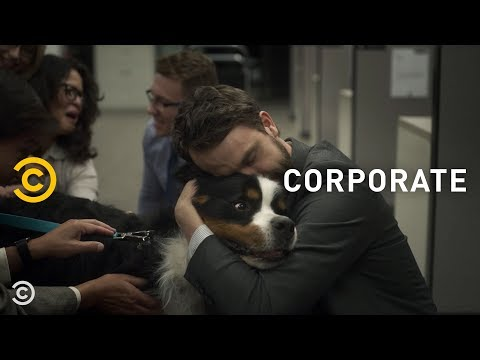 Everyone Loses It When Someone Brings a Dog to Work – Corporate