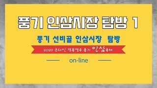 풍기인삼시장탐방 1편 '풍기선비골인삼시장'
