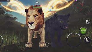 Wild Animals Online - Navy Ads (+Pics With Friends)