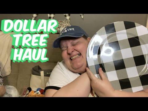 Dollar Tree Haul From Springfield, MO