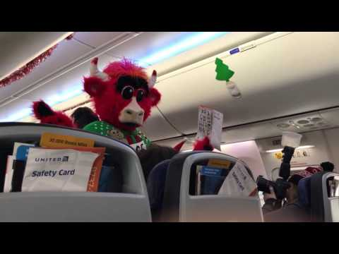 Benny the Bull is a Flight Attendant