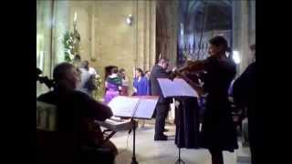 Brindis de la Traviata/ G. Verdi/Música para bodas