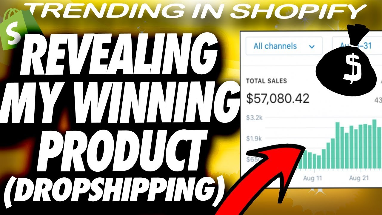 Showing You My Best Selling Shopify Product (PRODUCT REVEAL)