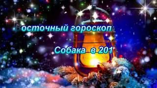 ВОСТОЧНЫЙ ГОРОСКОП 2019 - СОБАКА