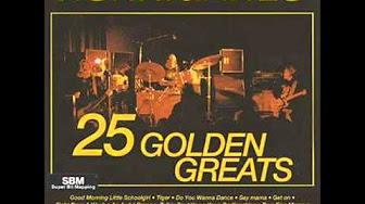 HURRIGANES 25 GOLDEN GREATS