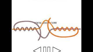 Các nút buộc dây - Popular fishing knot