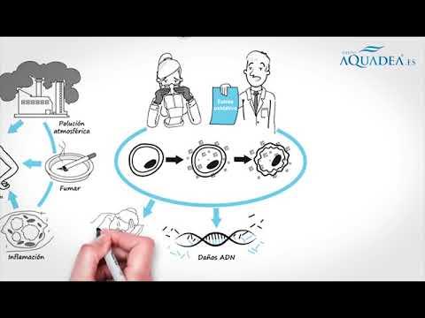 Hidrogenador Direct Life de Aquadea