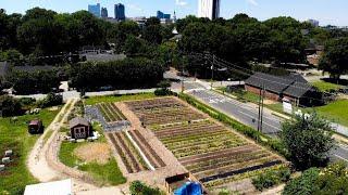 Urban Farm Transformed - A Short Film
