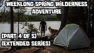 Weeklong Spring Wilderness Adventure With My Dog (Part 4 of 5) [Extended Series]