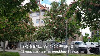 Living in Germany/ 독일일상 #5 수욜 …