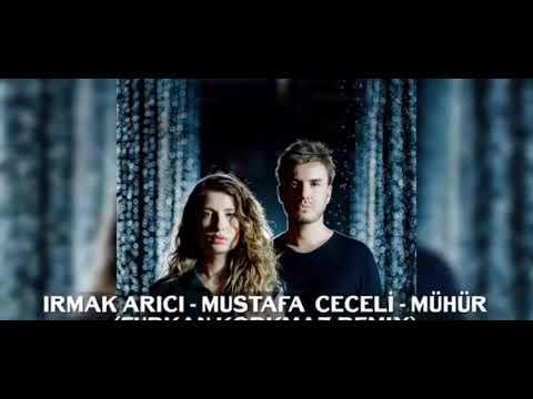DJ Shark ft. Irmak ARICI & Mustafa CECELİ - Mühür (Remix)