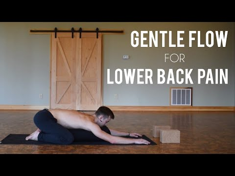 yoga for wrestlers  gentle flow for lower back pain  youtube