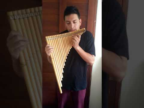FROM PERU PROFESSIONAL LUPACA CHROMATIC  PAN FLUTE 41 PIPES
