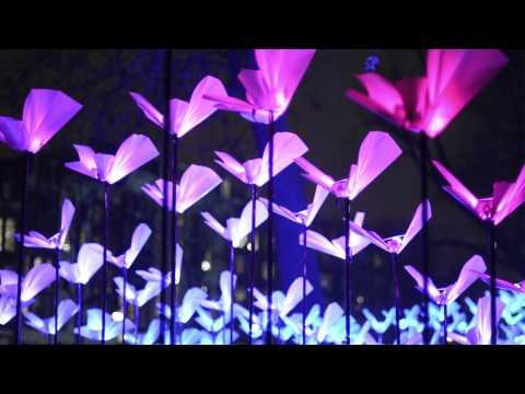 Amsterdam Light Festival Tour