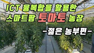 ICT 융복합을 활용한 스마트팜 토마토 농장