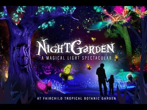 Night Garden At Fairchild Tropical Botanical Gardens In Miami, Fl.